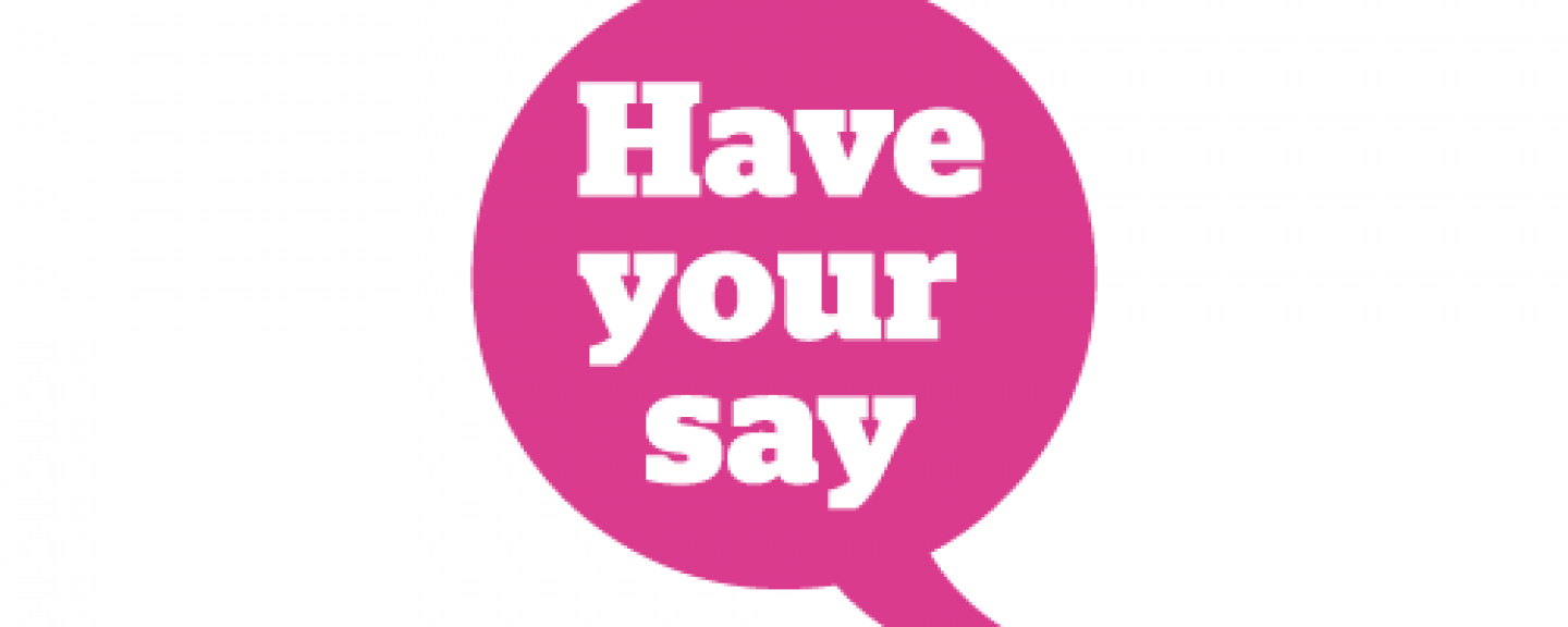 Inforgraphic of a pink speech bubble saying have your say