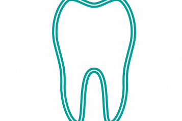 An infographic of a tooth